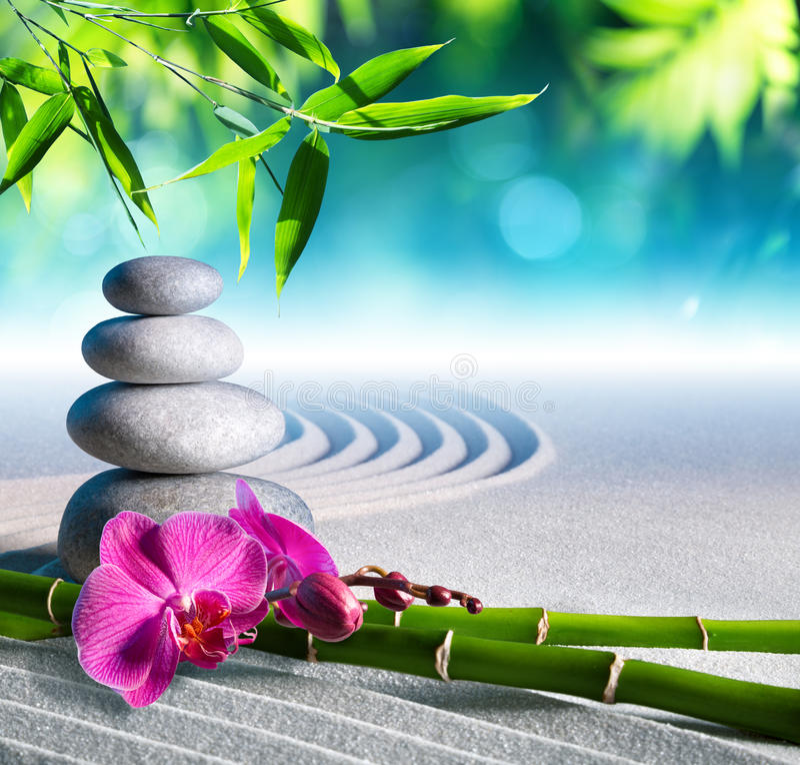 Камни песка, орхидеи и массажа стоковые фотографии rf
