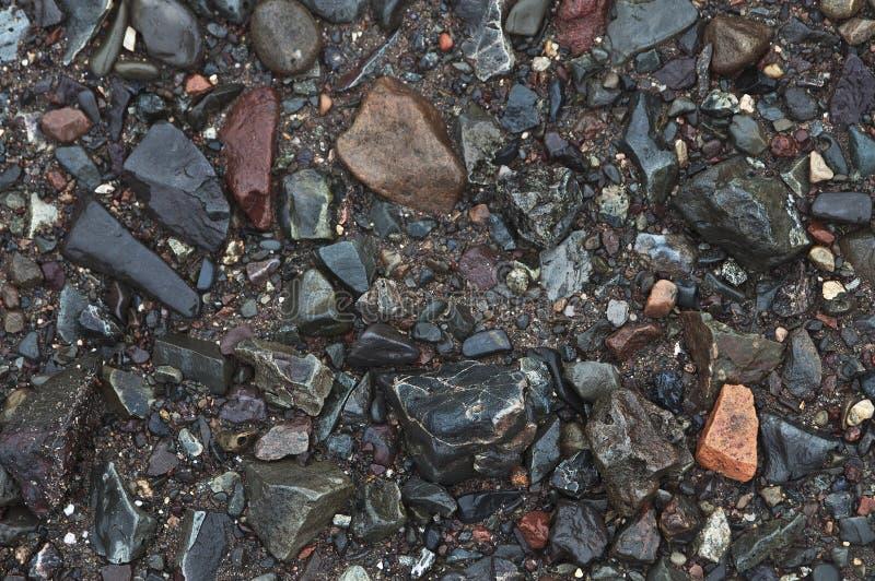 камни пляжа присутствующие стоковое изображение rf