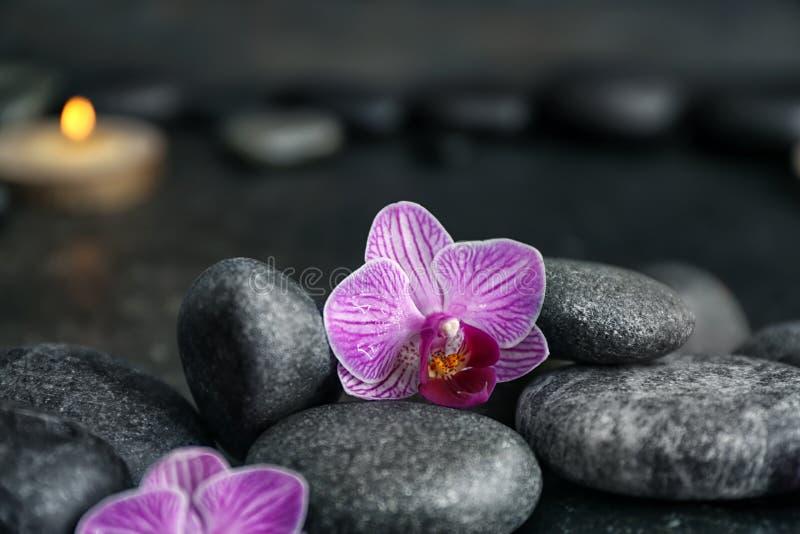 Камни спа и красивые цветки орхидеи на темной запачканной предпосылке стоковая фотография