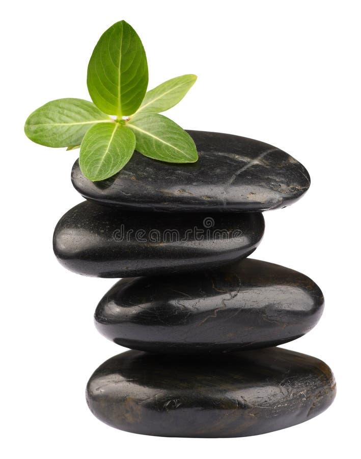 камни спы