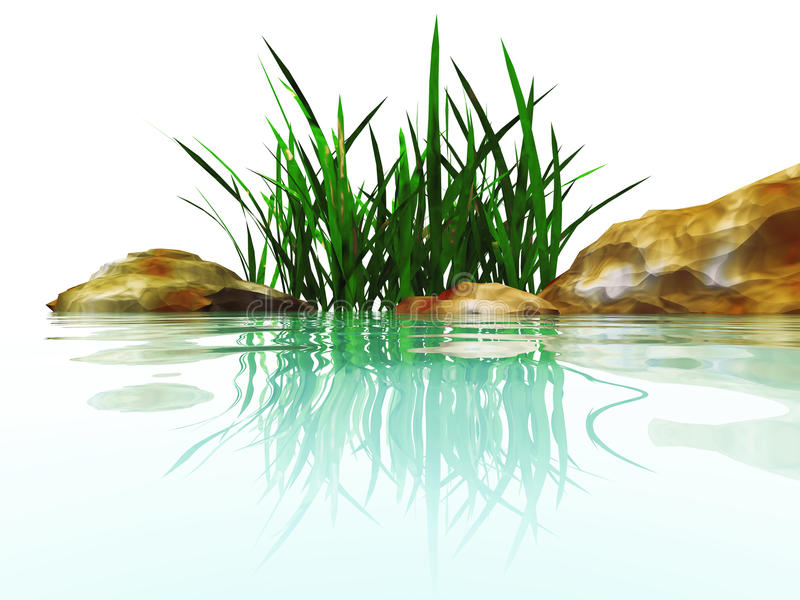 камни трав иллюстрация вектора
