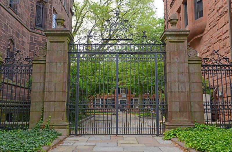 Кампус Ейль старый, Йельский университет, CT, США стоковые фото