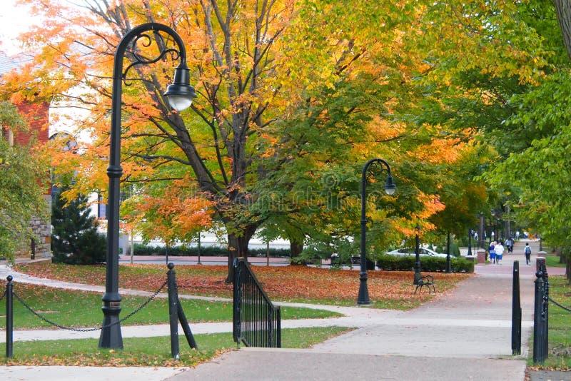 Кампус колледжа финансируемого властями штата осенью стоковые фото