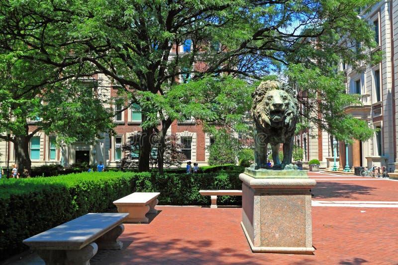 Кампус Колумбийского университета стоковые фотографии rf
