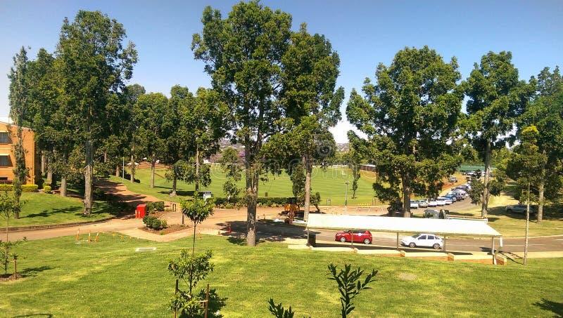 Кампус средней школы стоковое изображение