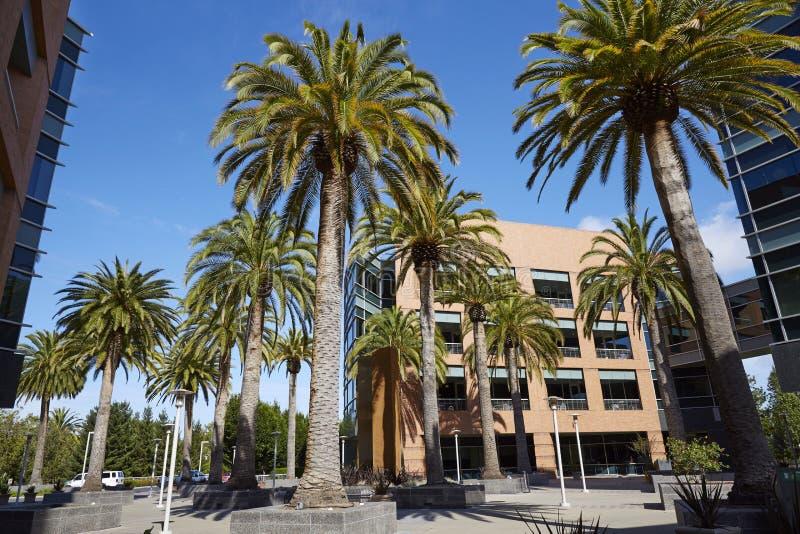 Кампус Google, зона посетителя стоковые изображения
