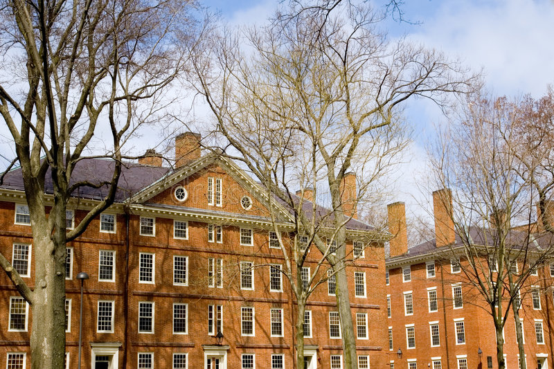 кампус harvard стоковое изображение
