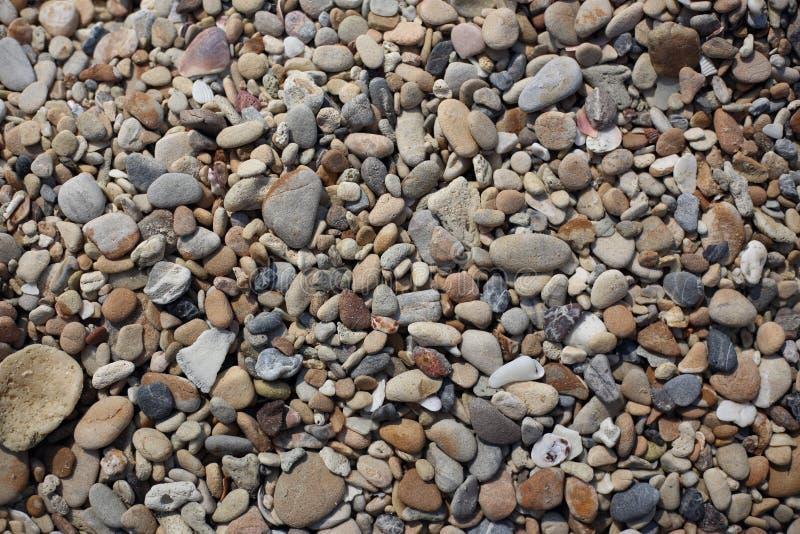 Камушки на пляже стоковое изображение