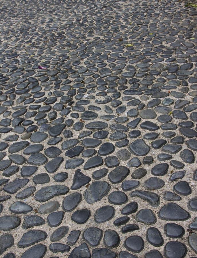 камушки путя стоковая фотография rf