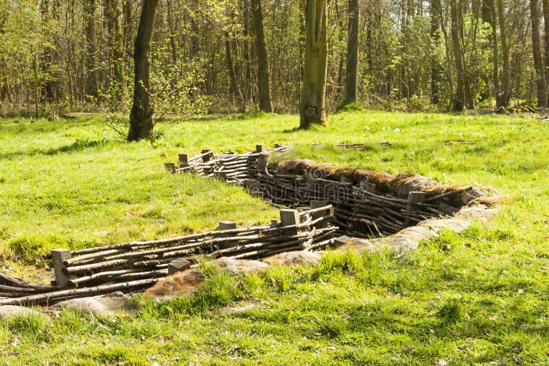 Канава Bayernwald деревянная Первой Мировой Войны Бельгии стоковые фото