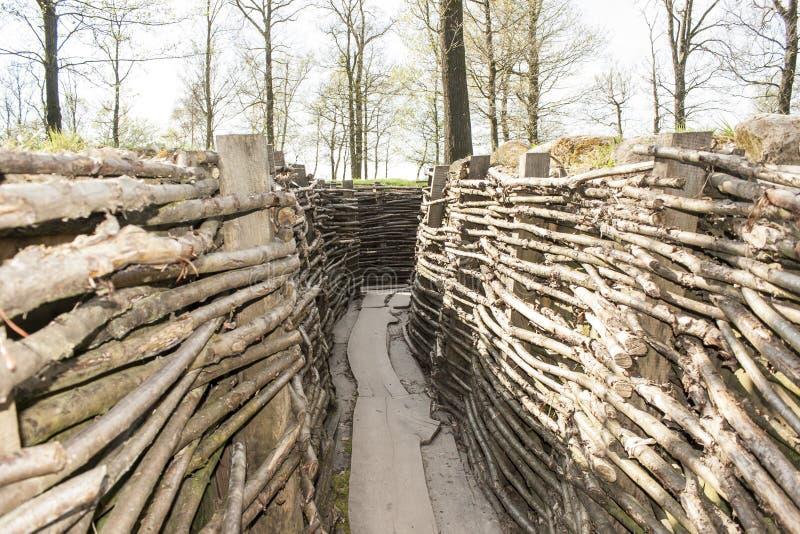 Канава Bayernwald деревянная Первой Мировой Войны Бельгии стоковое фото rf
