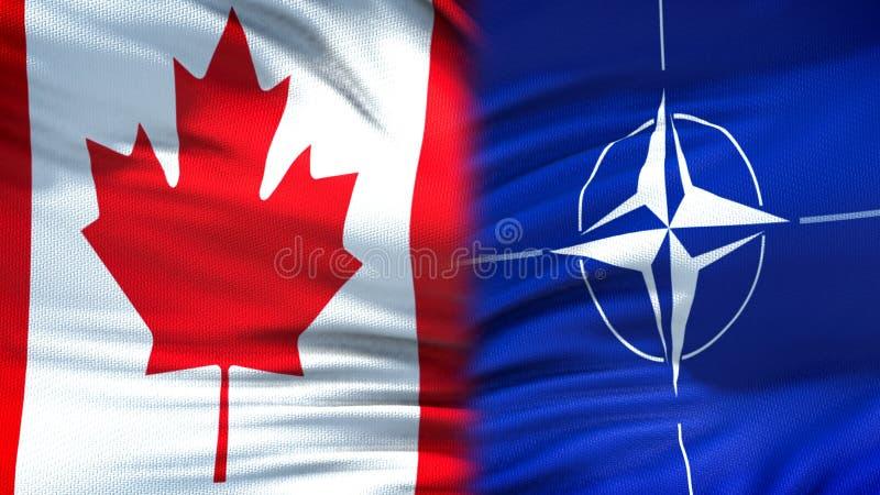 Канада и предпосылка флагов НАТО, дипломатический и экономические отношения, безопасность стоковое изображение