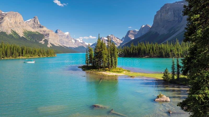 канадские rockies стоковые изображения