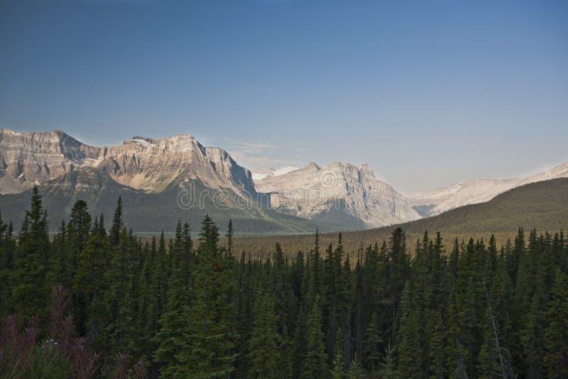 канадский национальный парк rockies яшмы стоковая фотография