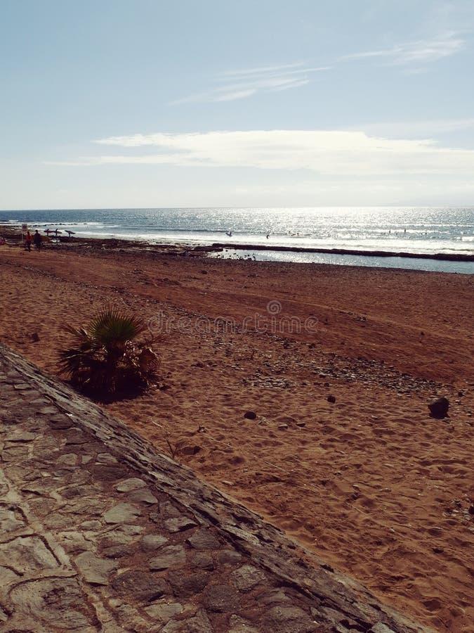 Канарские острова Испания Тенерифе стоковые фотографии rf