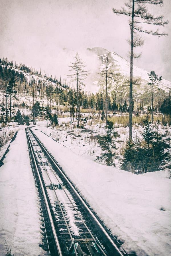 Канатная железная дорога на высоком Tatras в Словакии, сетноом-аналогов фильтре стоковые фото