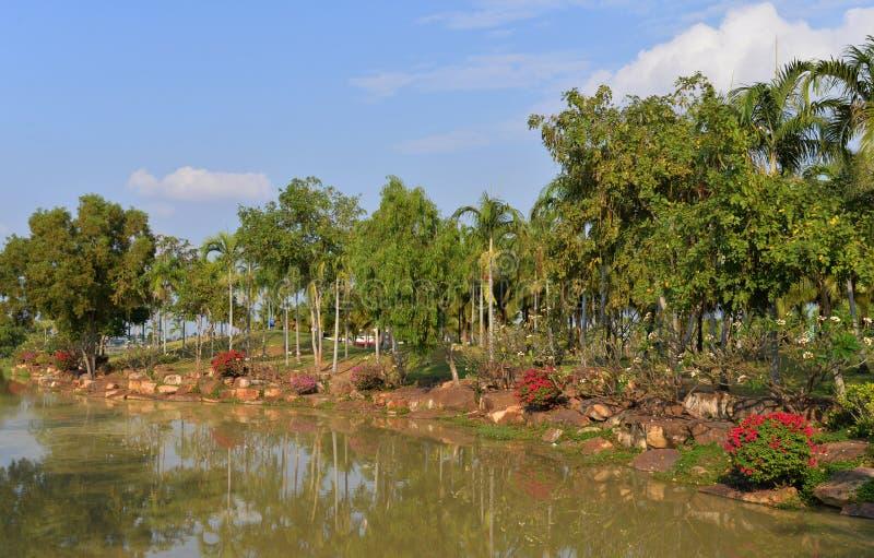 Канал в парке стоковые изображения