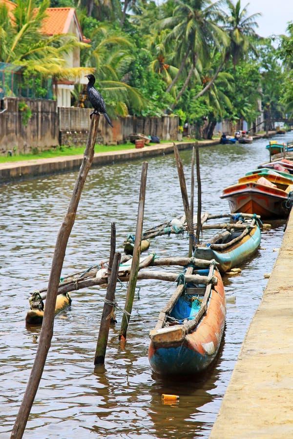 Канал Гамильтона, Negombo Шри-Ланка стоковая фотография rf