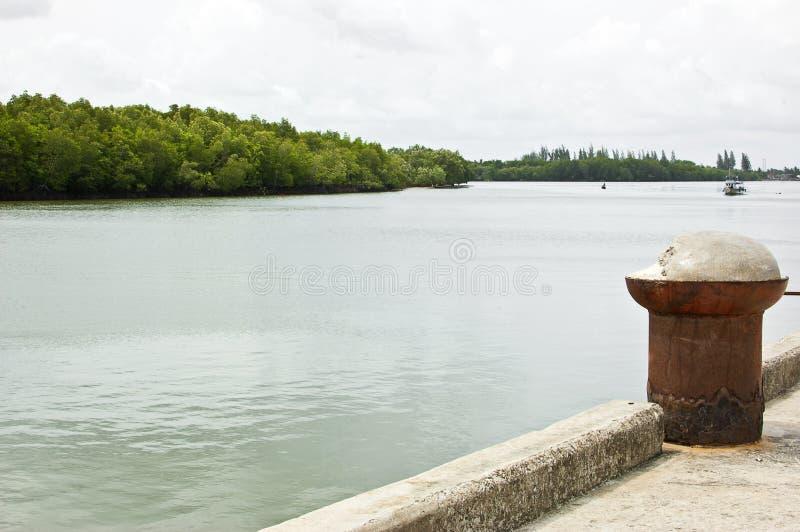 Канал и гавань мангровы стоковые изображения rf