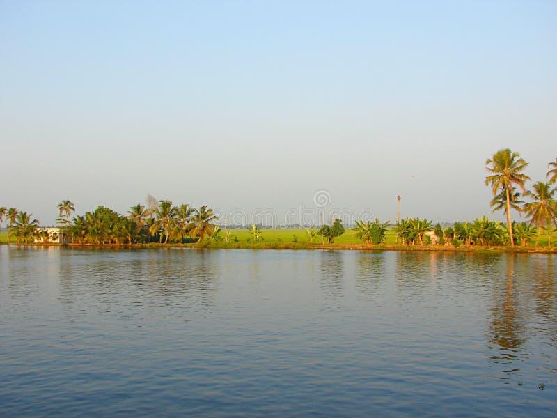 Канал подпора с рисовыми полями в предпосылке, Керале, Индии - естественной предпосылке стоковая фотография