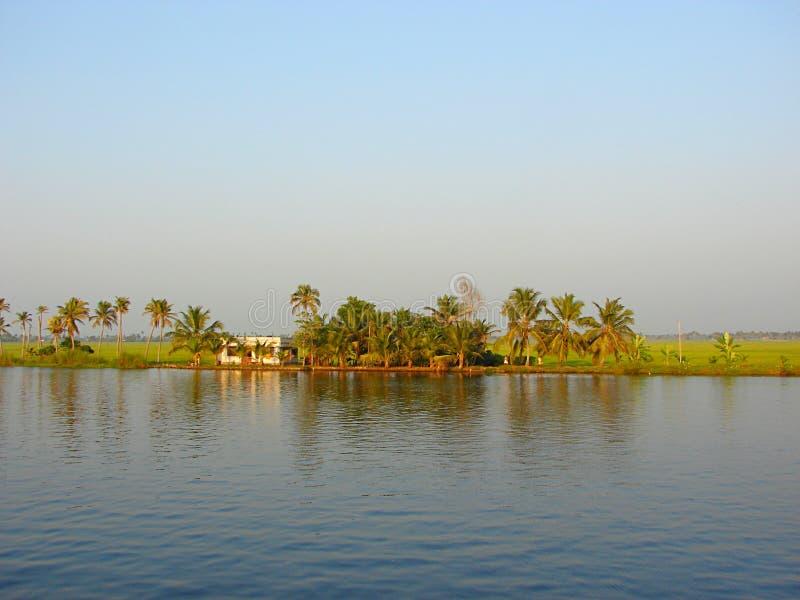 Канал подпора с рисовыми полями и пальмами в предпосылке, Керале, Индии - естественной предпосылке стоковое изображение
