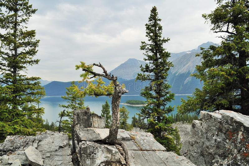 Канадская природа - Kananaskis, озеро горы стоковые изображения rf
