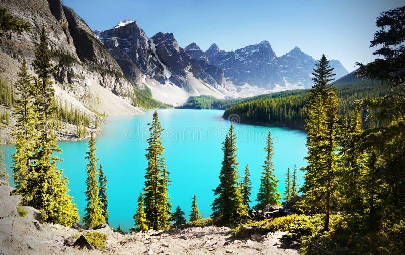 канадские rockies стоковое фото