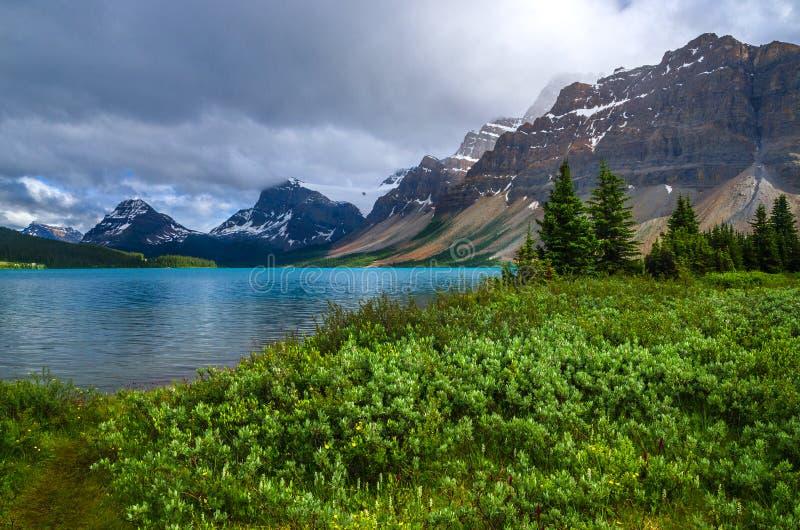 канадские rockies стоковые фото