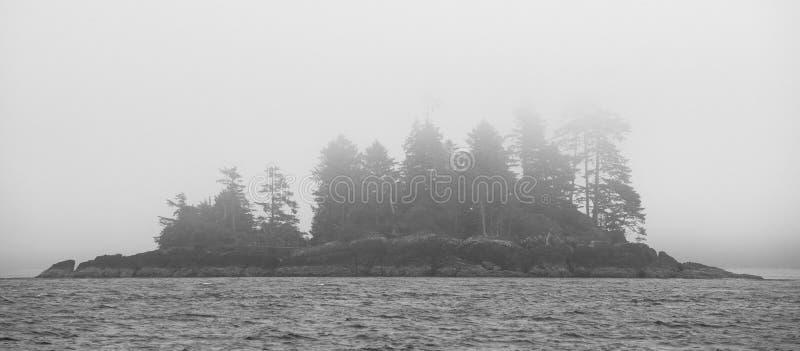 канадский ландшафт Взгляд от моря vancouver Канада стоковое изображение rf