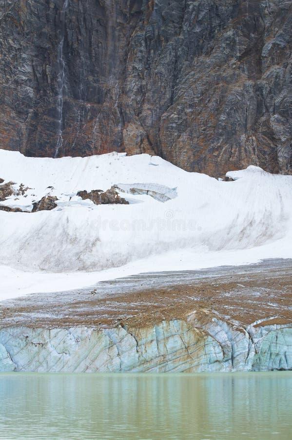 Канадский ландшафт с держателем Эдитом Cavell яшма альбатроса стоковые изображения rf