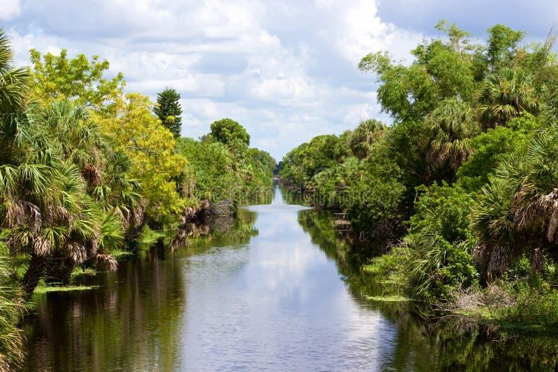 Канал с деревьями на стороне стоковые фото