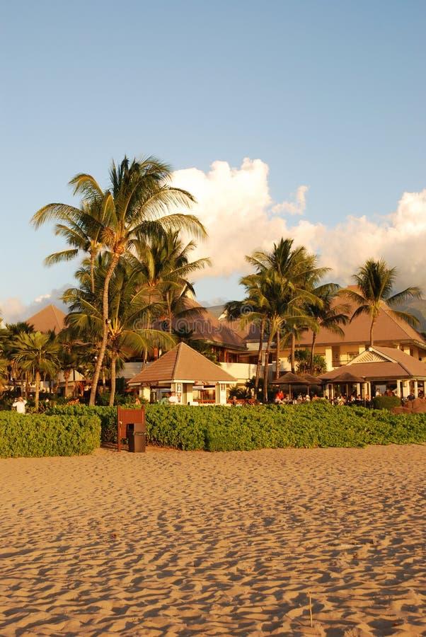 каникула курорта тропическая стоковая фотография