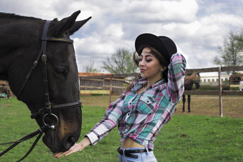Каникулы с лошадями outdoors стоковое изображение