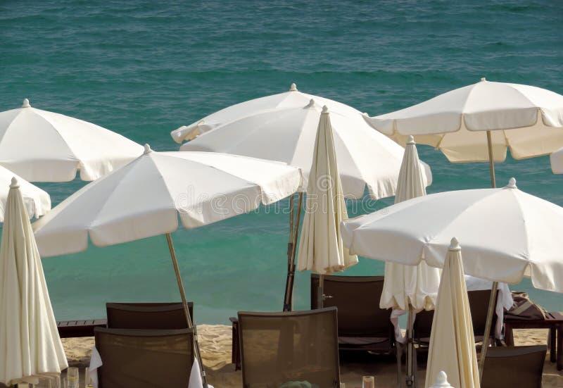 Канн - белые зонтики на пляже стоковое фото