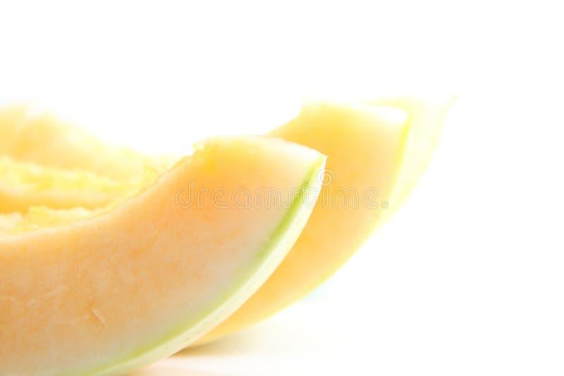 Канталупа дамы Солнця стоковое фото rf