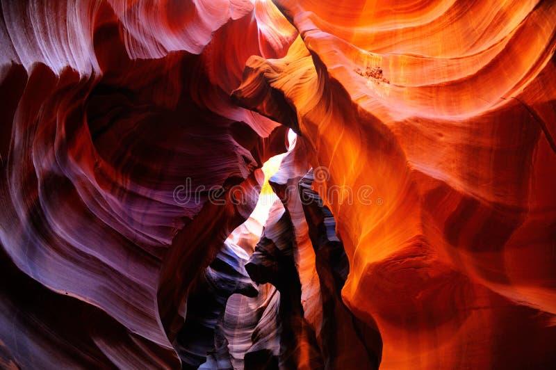 каньон Аризоны антилопы стоковая фотография rf