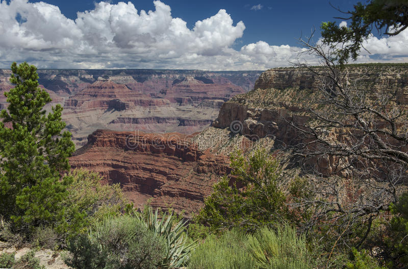 каньон Аризоны грандиозный стоковое фото rf