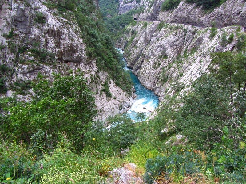 Каньон в Черногории стоковые изображения rf