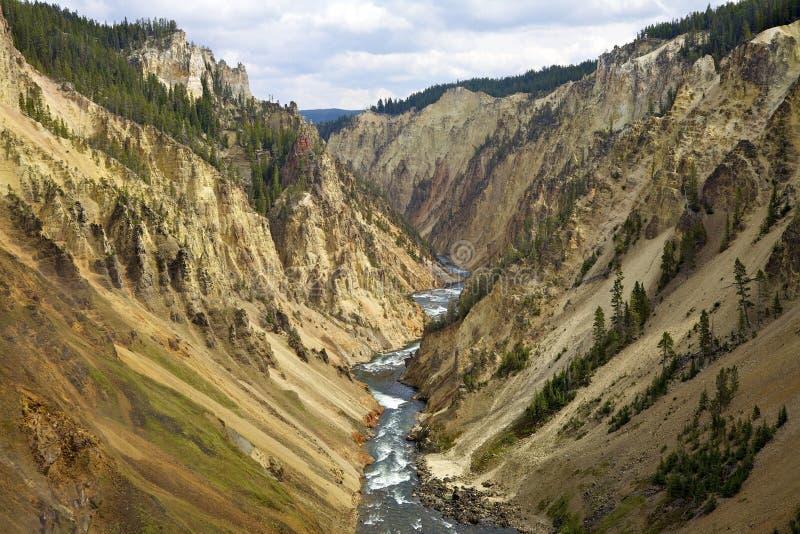 каньон грандиозный yellowstone стоковая фотография rf