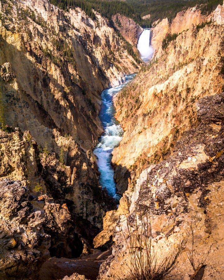 каньон грандиозный yellowstone стоковая фотография