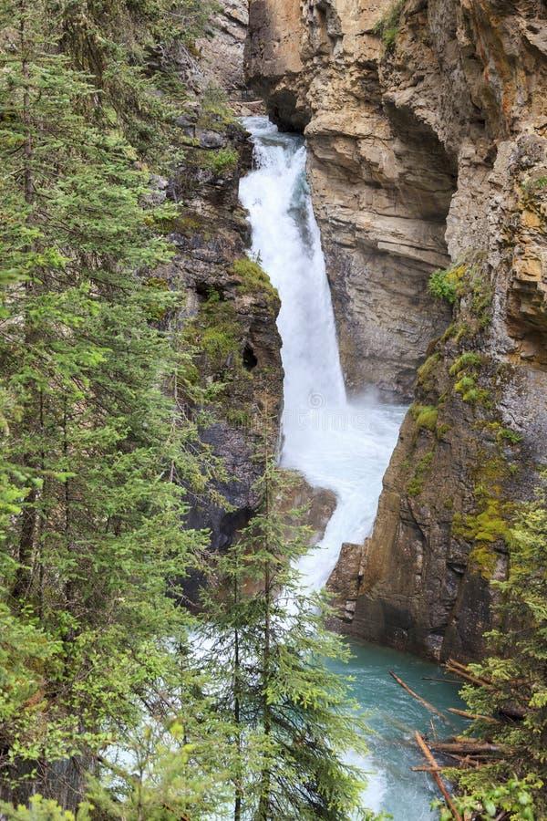 Каньон Канада Johnston стоковые фотографии rf
