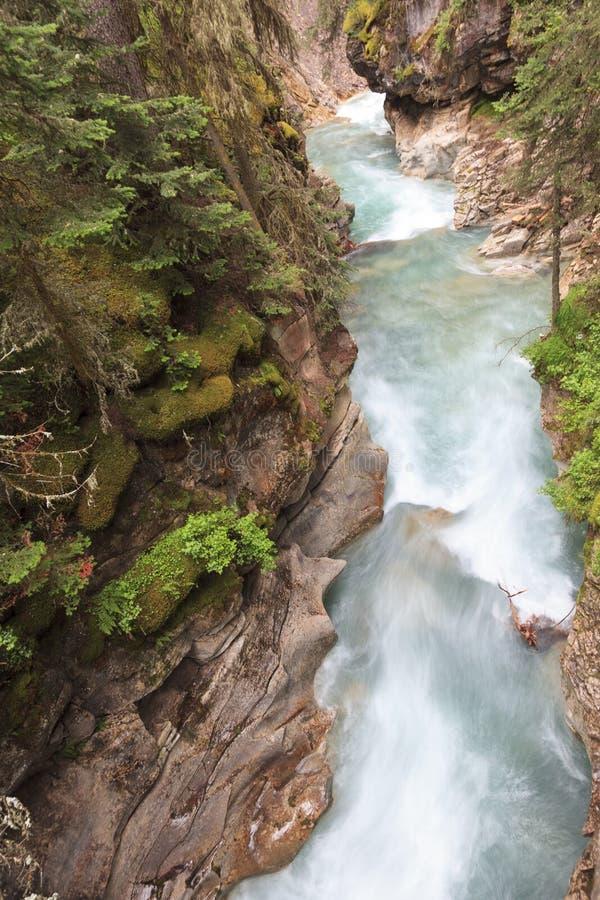 Каньон Канада Johnston стоковое фото