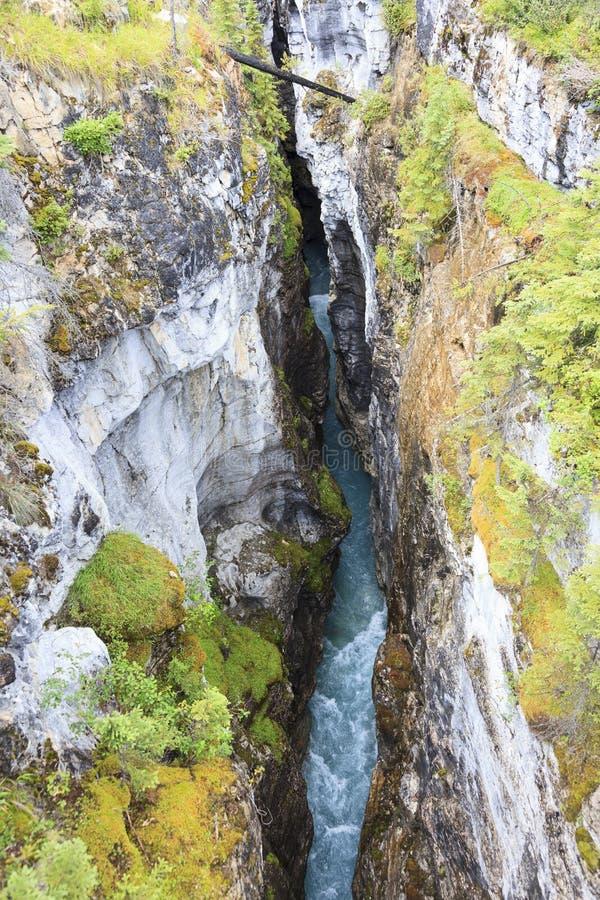 Каньон Канада Johnston стоковое изображение
