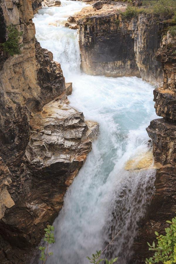Каньон Канада Johnston стоковое фото rf
