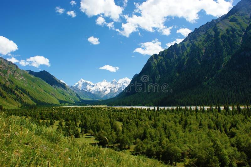 Каньон Китая Xiata грандиозный. стоковое изображение rf