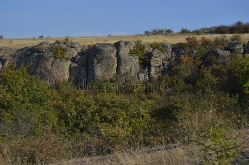 Каньон окружен растительностью и деревьями стоковая фотография rf