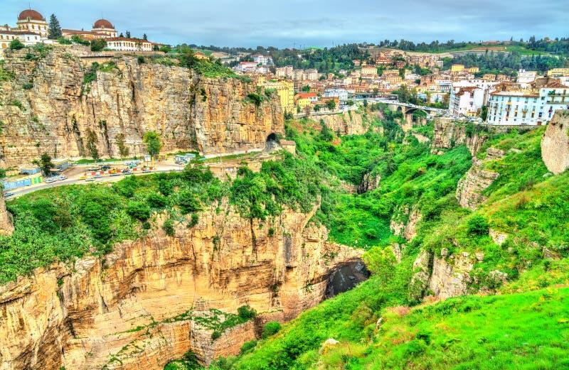 Каньон реки Rhummel в Константине бдительности стоковая фотография rf