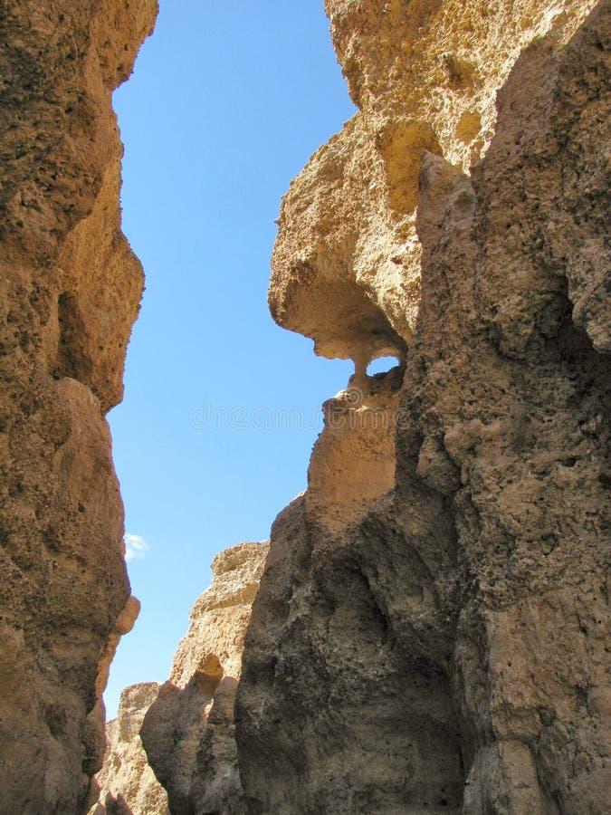 каньон стоковая фотография