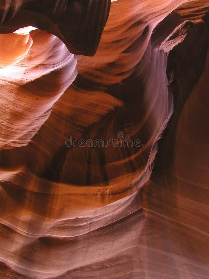 каньон 8 антилоп внутрь стоковое изображение rf