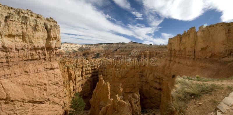 каньон bryce стоковое изображение